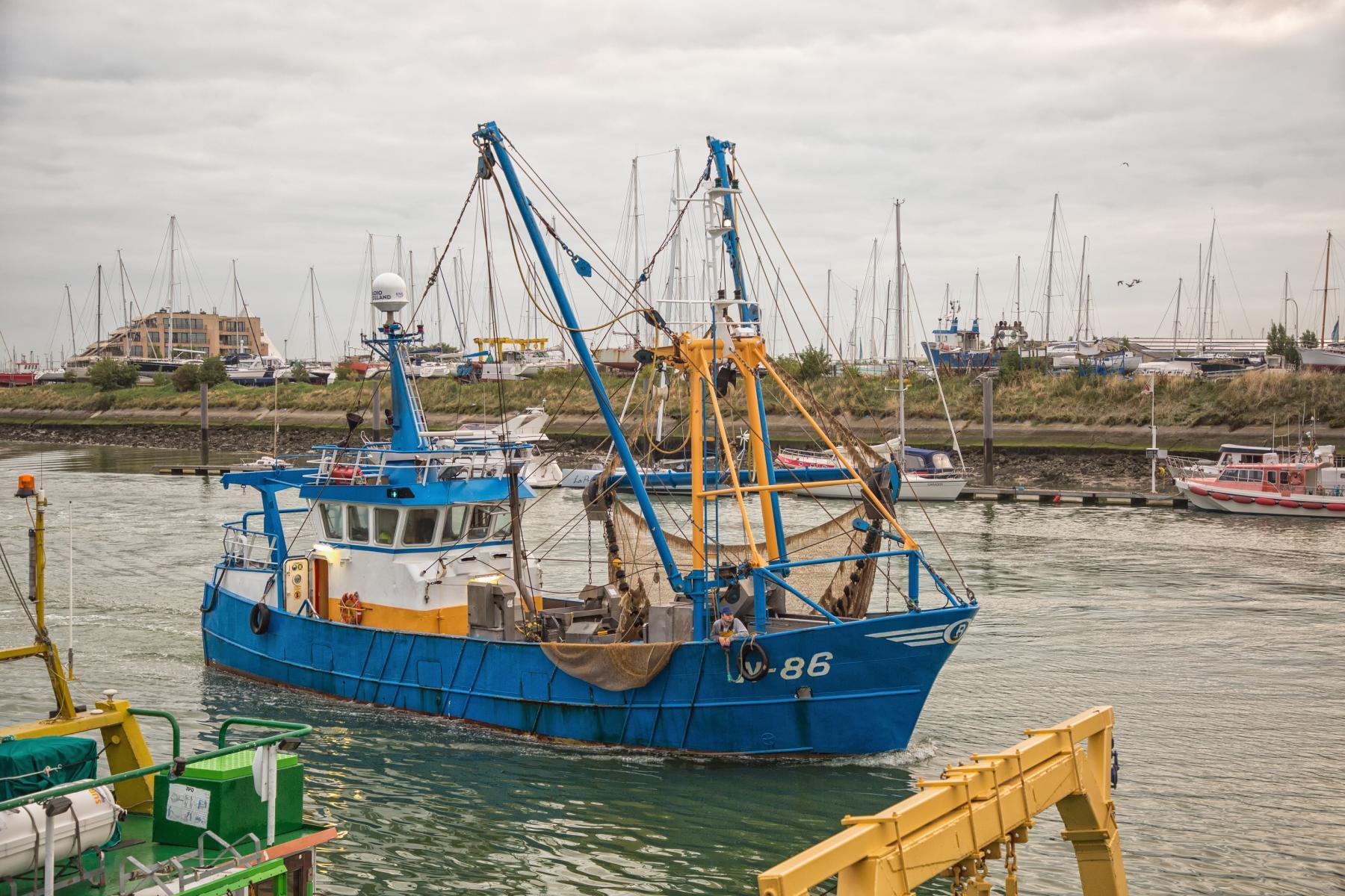 Visit-Nieuwpoort Vissershaven stedelijke Vismijn Visserij