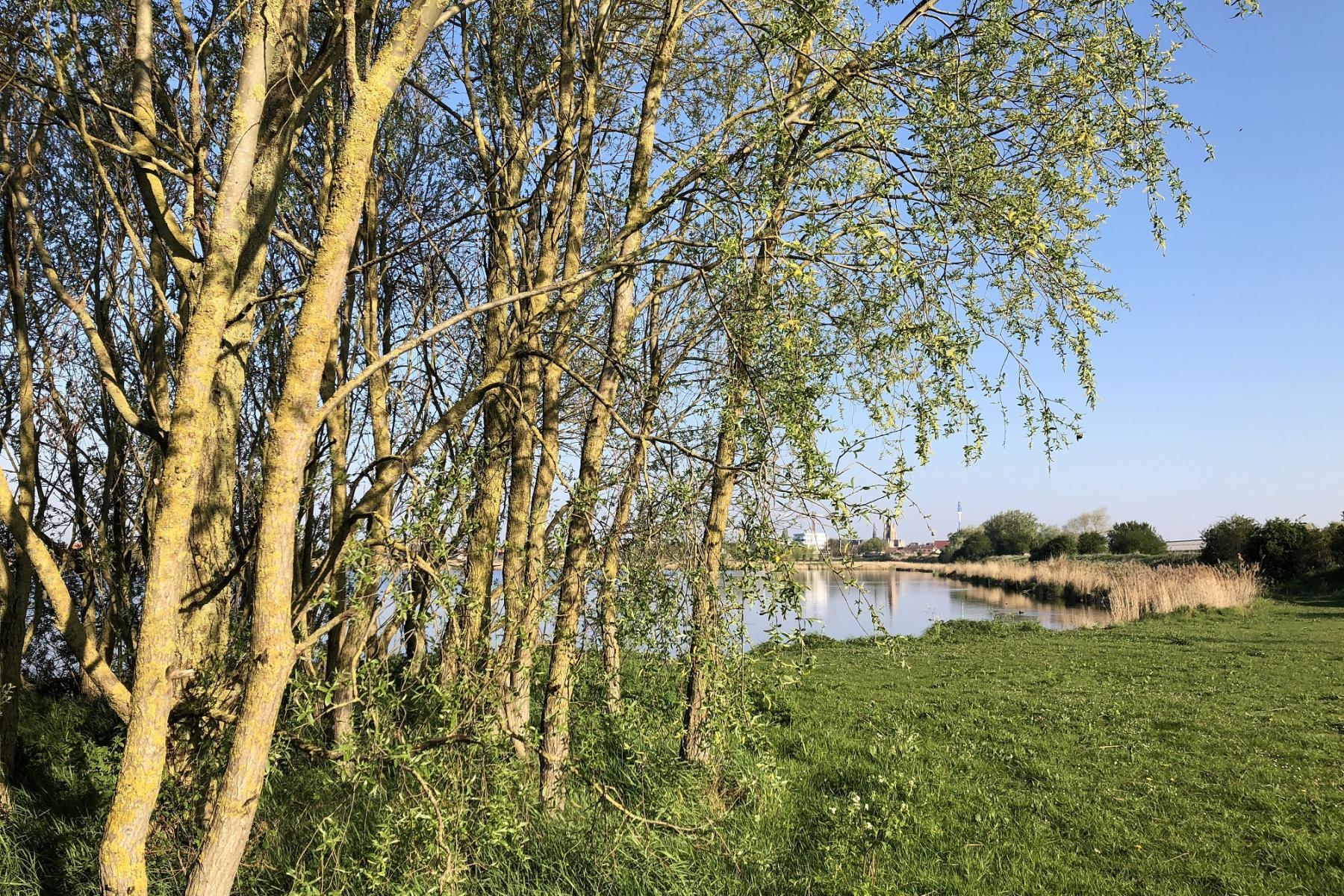 Visit-Nieuwpoort Nature reserve De Koolhofput