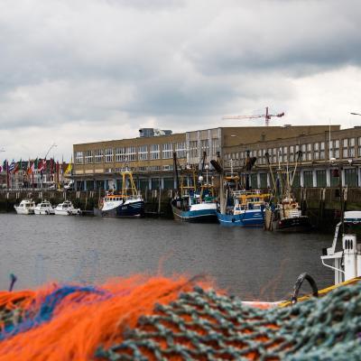 Visit Nieuwpoort Vissershaven stedelijke Vismijn Visserij