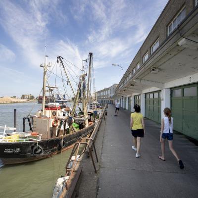 Visit Nieuwpoort - Wandeling in en rond de Vismijn