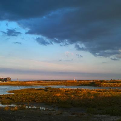 Visit Nieuwpoort Gidsbeurt natuurreservaat De IJzermonding