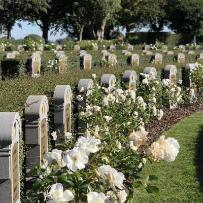 Visit Nieuwpoort Belgische Militaire Begraafplaats Ramskapelle